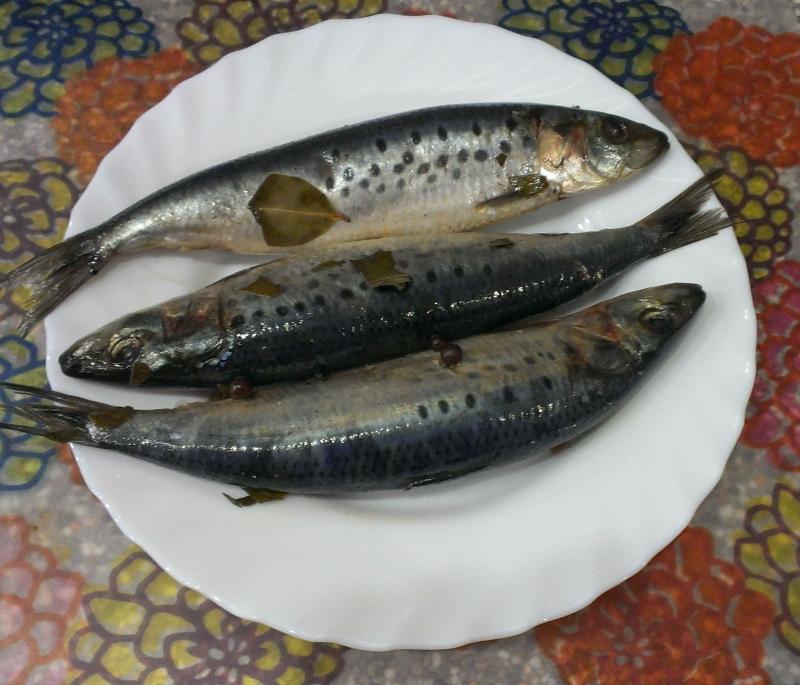 Селедка иваси пряного посола, как в СССР: рецепт вкусной слабосоленой рыбы